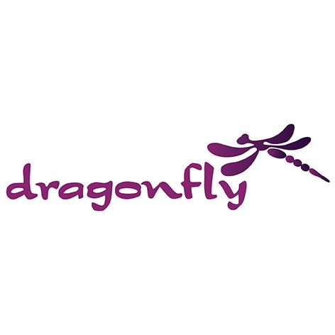 Dragonfly Wellness Retreat