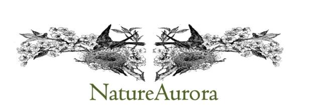 Nature Aurora